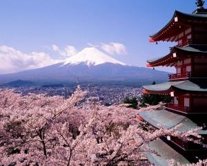 Курс японского языка в Херсоне