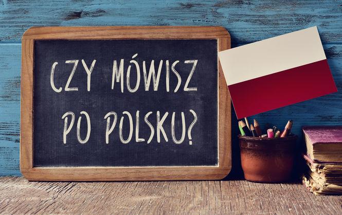 Необходимо срочно выучить польский язык?